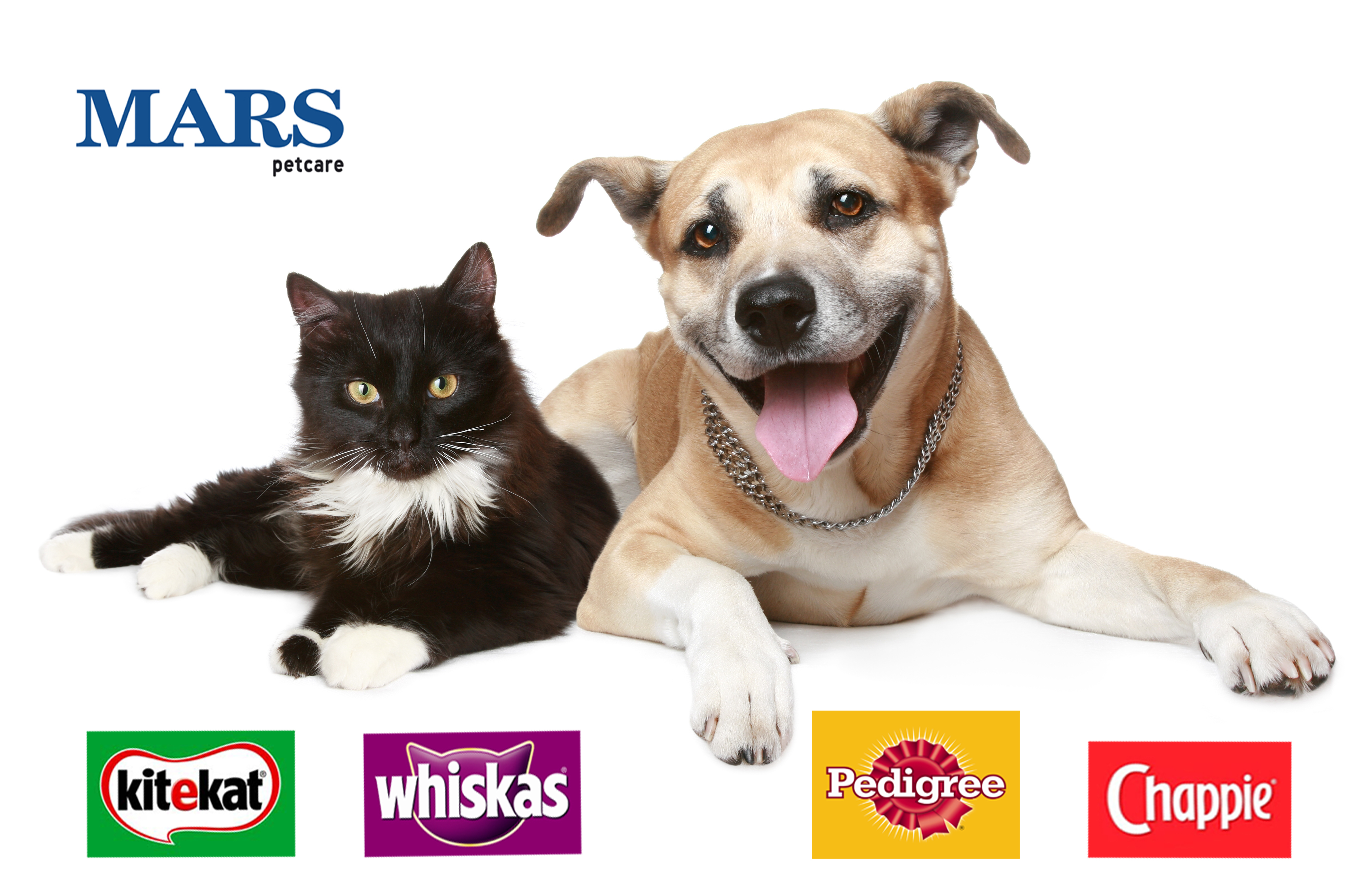 Mars Petcare Pack Of Pets